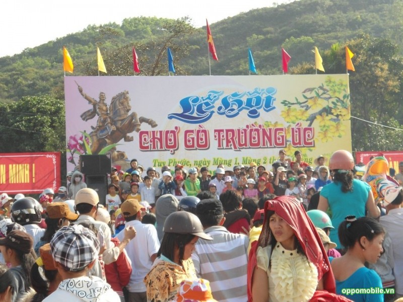 Lễ hội Chợ Gò - Tuy Phước